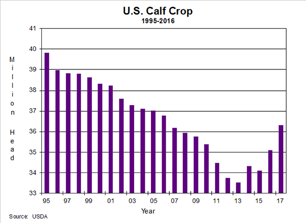 US_calf_crop.jpg
